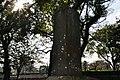Monument of SAIGŌ Takamori's Birthplace 西郷隆盛生誕碑 - panoramio.jpg