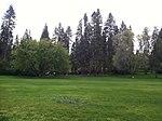 Moore park picnic area.jpeg