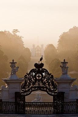 Morgensonne und Nebelschwaden