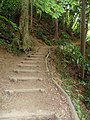 Mount Takao - Trail 4 (9406699901).jpg