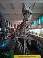 Museo de ciencias naturales - panoramio (1).jpg