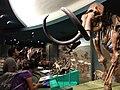 Muzeum przyrodnicze 08.jpg