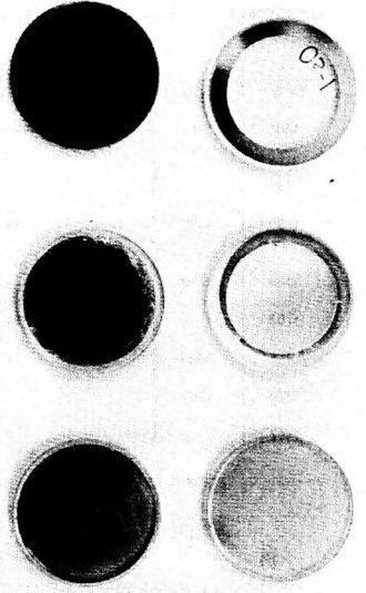 Osmium - Image: NAS Amirroroxidation