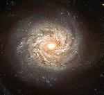 NGC 3982 - Hubble space telescope, 2003.jpg