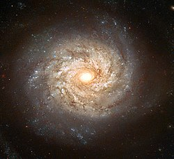 NGC 3982 - Hubble space telescope, 2003.jpg
