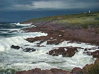 cape in Newfoundland and Labrador, Canada