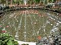 Nabana no Sato - panoramio (2).jpg