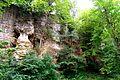 Naturschutzgebiet Saupark - Kleiner Deister - Felsformation der oberen Jura (Korallenoolith) (7).jpg