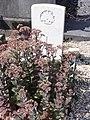 Nauroy (Aisne) tombe de guerre.JPG