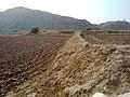 Navidhand new 392 - panoramio.jpg
