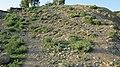 Navidhand village 2013 pic 17 - panoramio.jpg