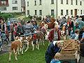 Nellingen Viehmarkt 2002.jpg