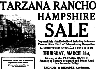 Tarzana, Los Angeles - Newspaper advertisement for sale of hogs, 1921