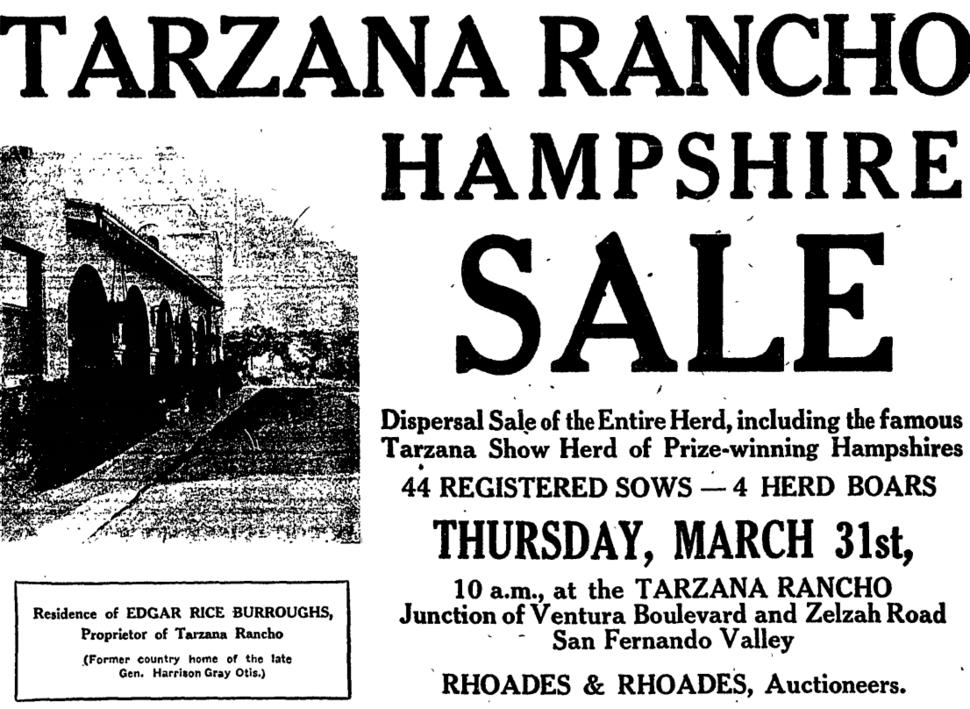 Newspaper advertisement disposing of herd of hogs on Tarzana Rancho, Los Angeles County, 1921