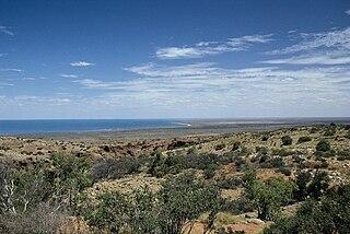 Ningaloo Coast coral reef in Western Australia