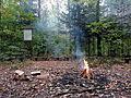 Nisko - ścieżka przyrodniczo-dydatkyczna - miejsce na ognisko (01).jpg