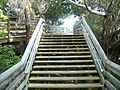 North PB FL MacArthur Beach SP stairs01.jpg