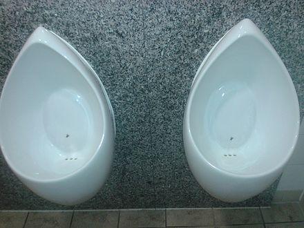 ナッジの例:男性用公衆トイレの小便器のセラミックに描かれたイエバエ