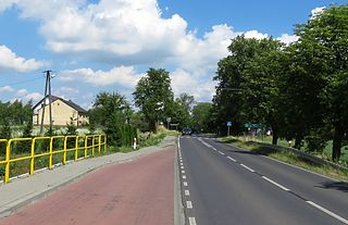 Kolonia Osiek Village in Kuyavian-Pomeranian Voivodeship, Poland