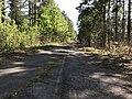 Old Bayleaf Road, Wake County 2.jpg