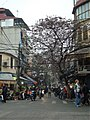 Old Quarter Hanoi Street View.JPG
