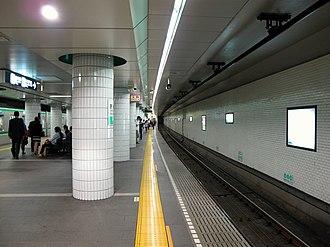 Omotesandō Station - Chiyoda Line Platform (2013)