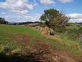 On Kerswell Hill - geograph.org.uk - 571435.jpg