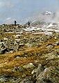 On the summit plateau of Beinn Narnain - geograph.org.uk - 617134.jpg