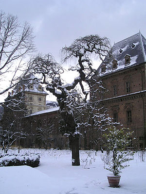 Orto Botanico dell'Università di Torino - Orto Botanico dell'Università di Torino