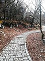 Oxia way to Vicos Gorge View 3.jpg