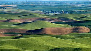 Pullman, Washington - Surrounding Palouse hills