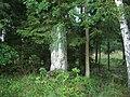 Památník u Stříbrných Hutí (Q80460097).jpg