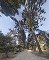 Park at Pashupatinath.jpg