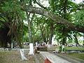 Parque La Isleta (4). Cartago, Valle, Colombia.JPG
