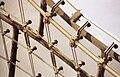Particolare del tessuto di cavi tesi (Monaco 2001).jpg
