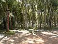 Paseo en Mérida.jpg