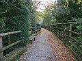 Passeggiata lungo il Rio del Parco Cittadino - panoramio.jpg