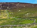 Pasture near Slea Head and Coumeenoole, Binn An Choma - geograph.org.uk - 16704.jpg