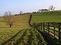 Pastures, Quainton - geograph.org.uk - 658793.jpg
