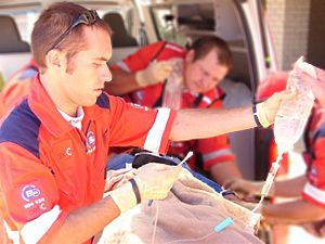 English: A paramedic preparing a intra-venous ...