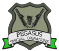 Pegasus Green Team re-Sized.png