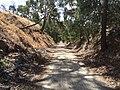 Penwortham SA 5453, Australia - panoramio.jpg