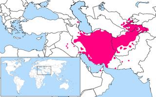 Persian language Western Iranian language