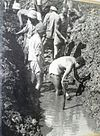 PikiWiki Israel 13860 Digging a ditch in Naaman.jpg
