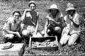 PikiWiki Israel 2937 Kibutz Gan-Shmuel sk22- 123 גן-שמואל-הוצאת גזר בגן הירק 1954.JPG