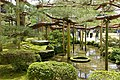 Pine - Kenroku-en - Kanazawa, Japan - DSC09766.jpg
