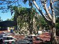 Pinecrest Gardens FL park concession02.jpg