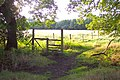 Pirbright footpath - geograph.org.uk - 57450.jpg