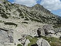Pirin National Park 47.JPG