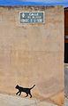 Placa del carrer Félix Rodríguez de la Fuente i graffiti de gat, Soneja.JPG